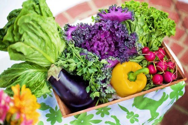 10 советов, как экономить на продуктах и притом есть сытно и вкусно