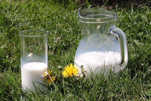 На что следует обратить внимание при покупке молока